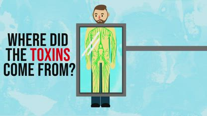 What you do every day eliminates toxins