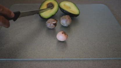 NEVER THROW AWAY A AVOCADO SEED AGAIN