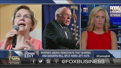 Democrats fear Warren, Bernie splitting up the far-left vote