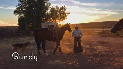 BUNDY, the True Story — Official