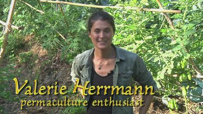 Permaculture Gardens! Val Transforms a Restaurant Garden - Part 1