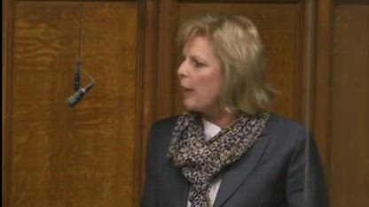 Anna Soubry and the Parliamentary BackTrackers Rap