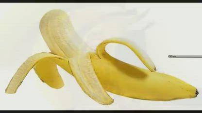Top 5 Health Benefits of Bananas