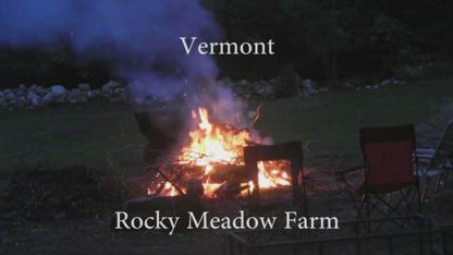 Homesteading From The Beginning (Part 34 Making A Meadow)