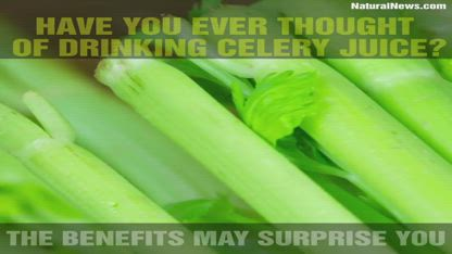 Have you ever thought of drinking celery juice? The benefits may surprise you.