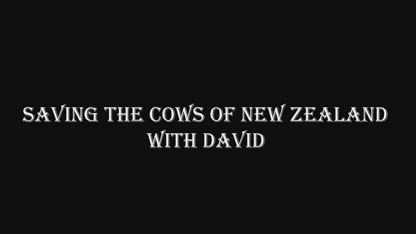 Saving the Cows of New Zealand with Chlorine Dioxide