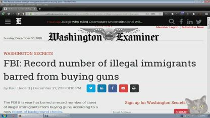 FBI: Record number of illegal immigrants barred from buying guns